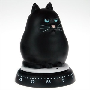 Official picture of the Black Cat timer