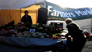 Customers picking organic vegetables from Court Farm Leisure stand