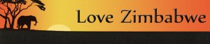 Official logo of Love Zimbabwe Charity