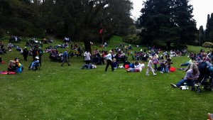 Picnic Area during the Chilli Festival in May 2012
