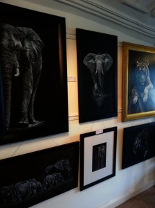 Karl's paintings inspired by Africa and wildlife
