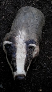 Second badger