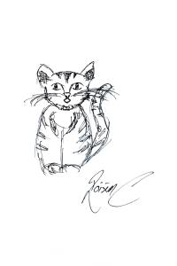 Cat by Roisin