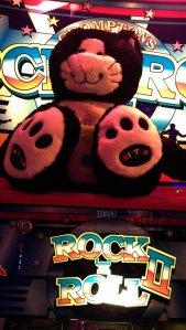 Rock and Roll kitten
