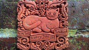 Fine cat indeed