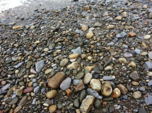 The stones from the beach are  a popular paving materials - many drives in the village are paved with them