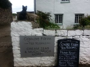 Ogmore Farm TeaRooms
