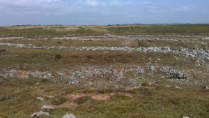 Stone circles - they were used as a practice targets for military planes