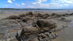 The rocky part of the beach is very interesting, you can find crabs and  seashells in the rock pools forming at high tide