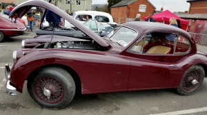 Ford Thunderbird profile